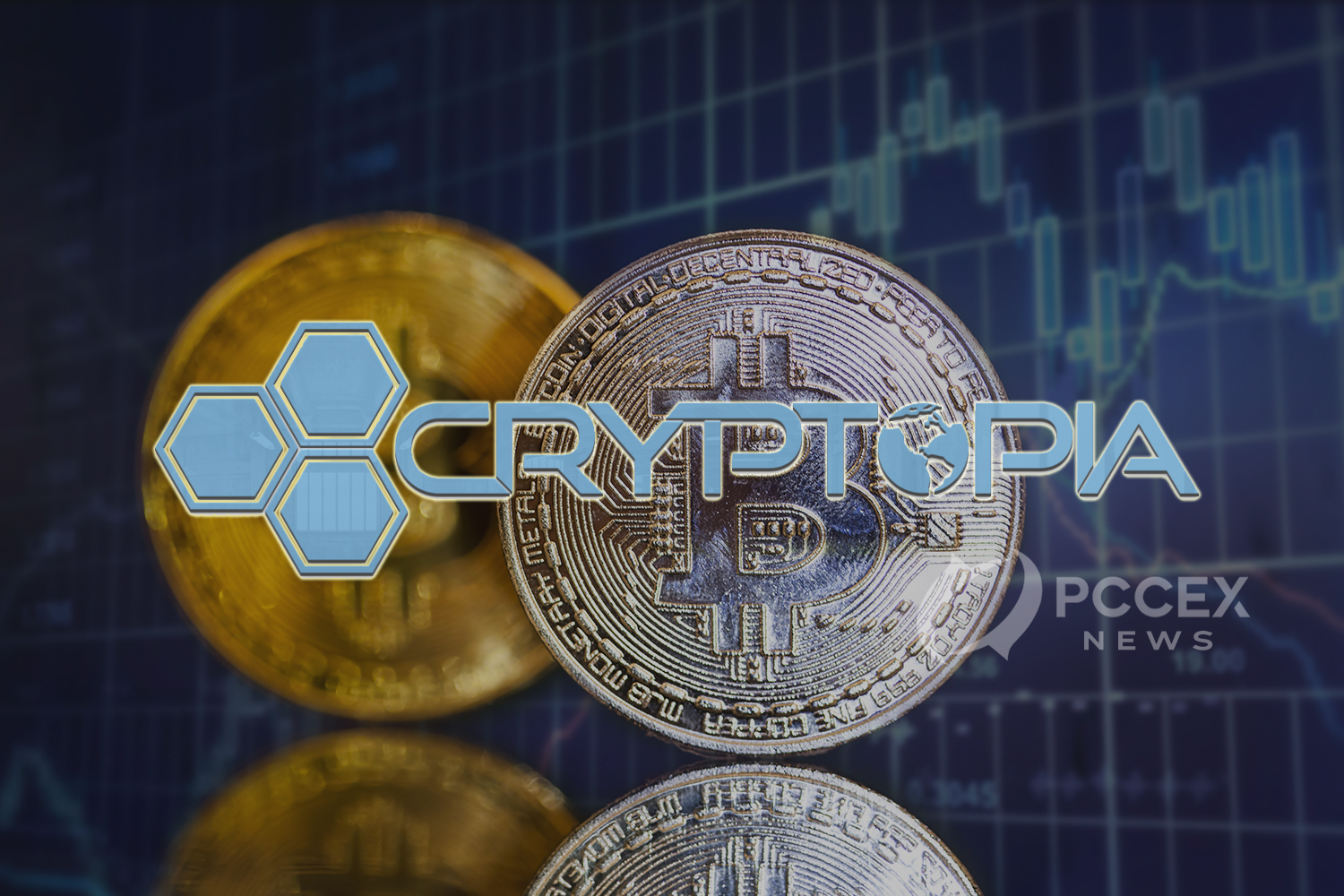 Judgement on User Assets; Cryptocurrency Exchange Cryptopia