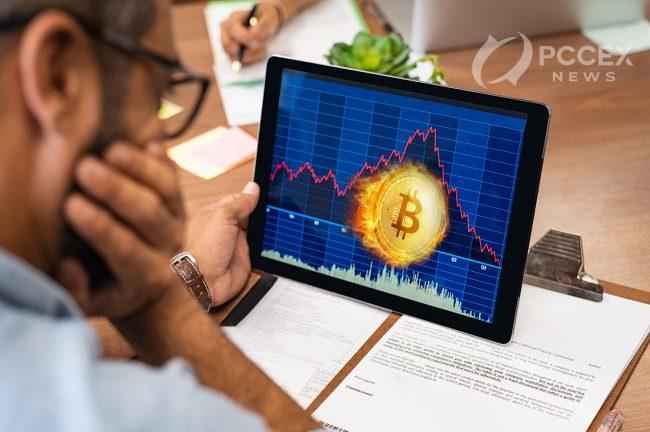 Bitcoin market crash