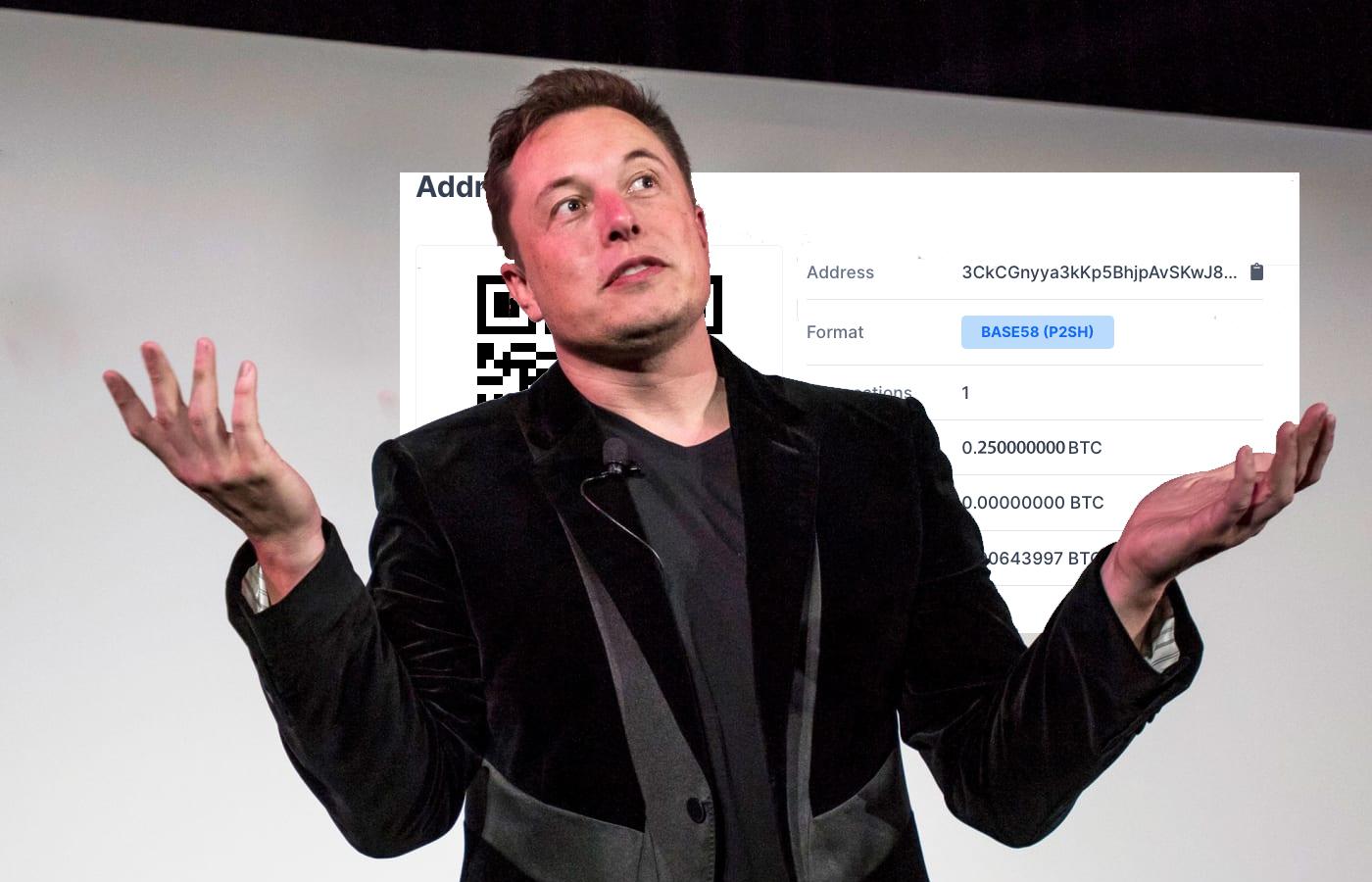 Elon Musk Reveals How Much Bitcoin He Has